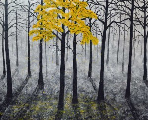 tucker-Mist-forest